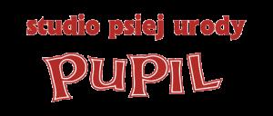 Pupil-logo500