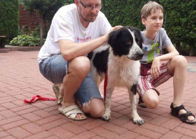 strzyżenie i pielęgnacja psów, kursy gromerskie-pupil-konin (16)