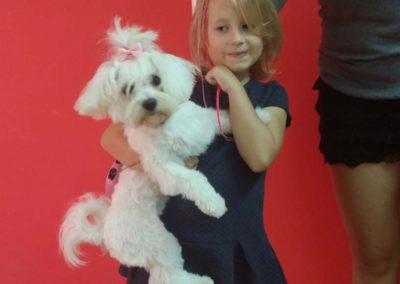 strzyżenie i pielęgnacja psów, kursy gromerskie-pupil-konin (23)