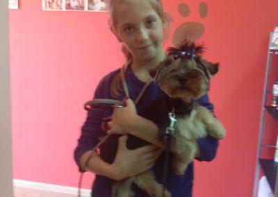 strzyżenie i pielęgnacja psów, kursy gromerskie-pupil-konin (29)